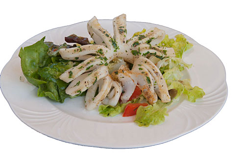 Gegrillte Tintenfische auf Salatbett