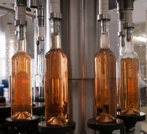 Die Weiß- und Roséweine des neuen Jahrgangs sind gefüllt.