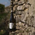 Weinflasche an Trockenmauer