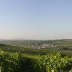 Groß-Winternheim Panorama
